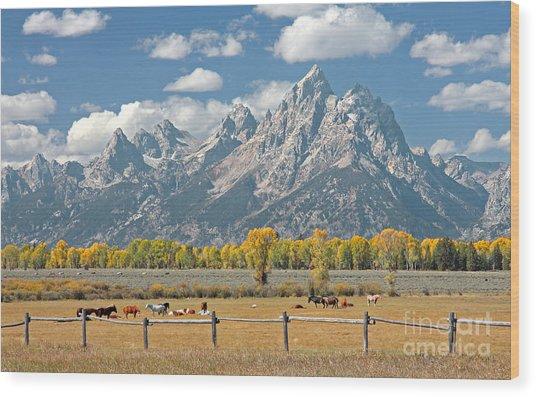 Teton Range Wood Print