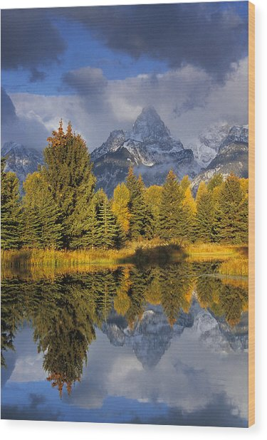 Tetons And Pond Wood Print