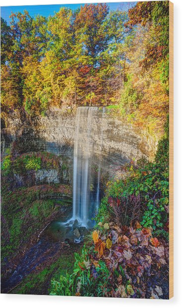 Tews Falls Wood Print by Craig Brown