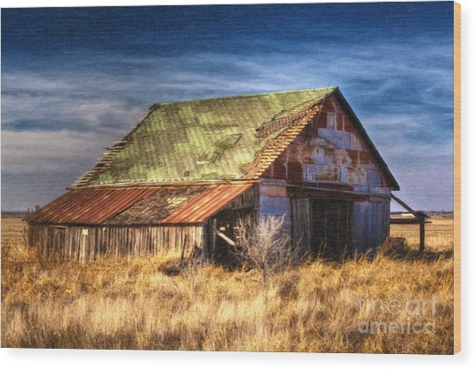 Texas Barn 1 Wood Print