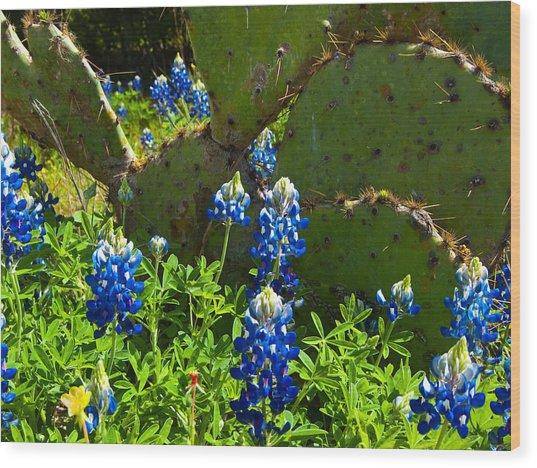 Texas Blue Bonnets Wood Print by Mark Weaver