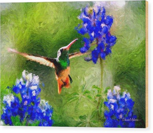 Da161 Texas Bluebonnet Hummingbird By Daniel Adams Wood Print