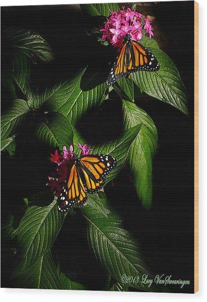 Texas Bred Wood Print