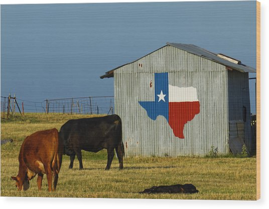 Texas Farm With Texas Logo Wood Print