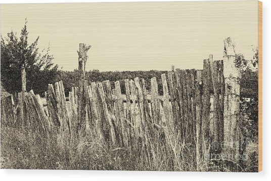 Texas Fence In Sepia Wood Print
