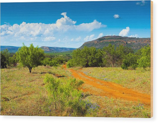 Texas Hill Country Red Dirt Road Wood Print