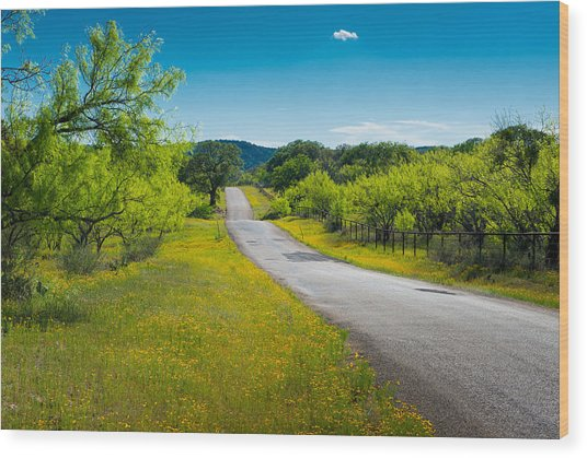 Texas Hill Country Road Wood Print