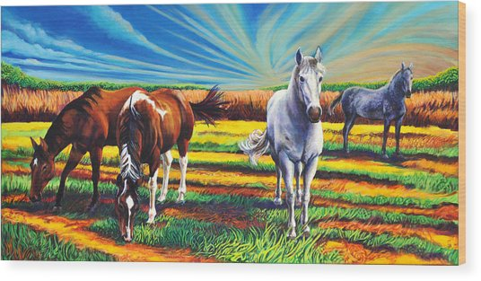 Texas Quarter Horses Wood Print
