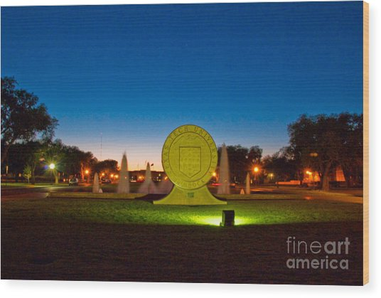 Wood Print featuring the photograph Texas Tech Seal At Night by Mae Wertz