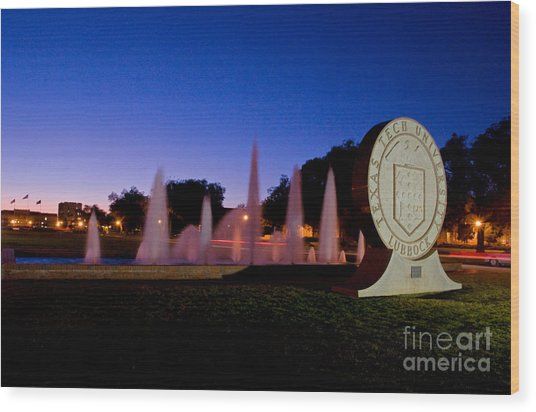 Wood Print featuring the photograph Texas Tech University Seal And Blue Sky by Mae Wertz