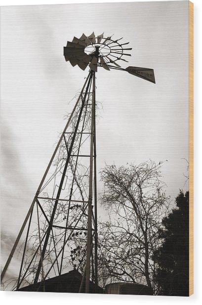 Texas Windmill Wood Print