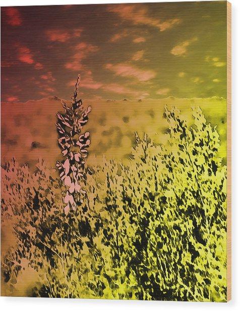 Texas Yucca Flower Wood Print