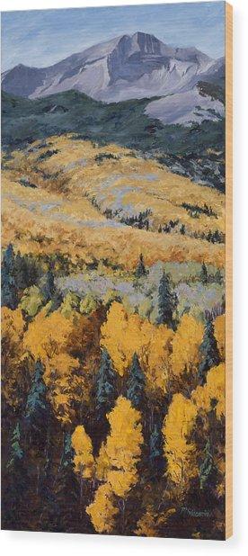 Texture Wood Print