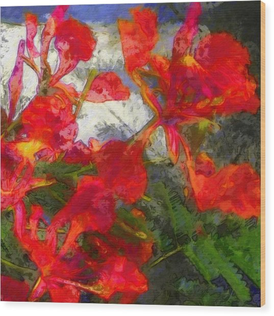 Textured Flamboyant Flowers - Square Wood Print
