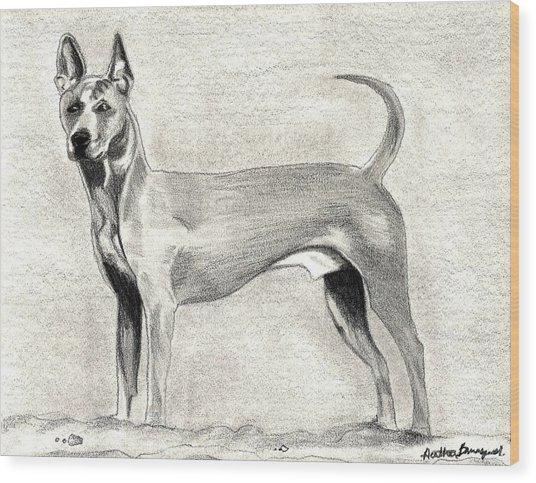 Thai Ridgeback Dog Wood Print by Olde Time  Mercantile