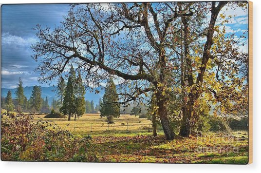 Thanksgiving Blessings Wood Print