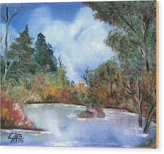 That Emerald Place Of Natures Beauty At Looking Glass Pond Wood Print