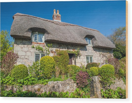 Thatched Cottage Godshill Isle Of Wight Wood Print by David Ross