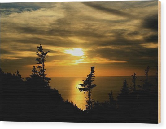 The Acadian Trail Wood Print