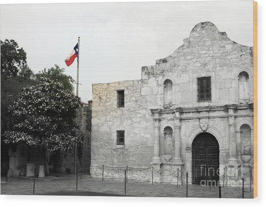The Alamo Wood Print