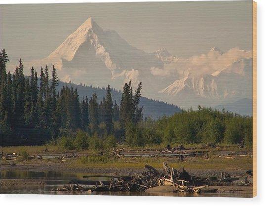The Alaska Range At Mount Hayes Wood Print