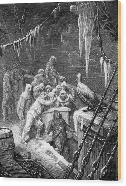 The Albatross Being Fed By The Sailors On The The Ship Marooned In The Frozen Seas Of Antartica Wood Print