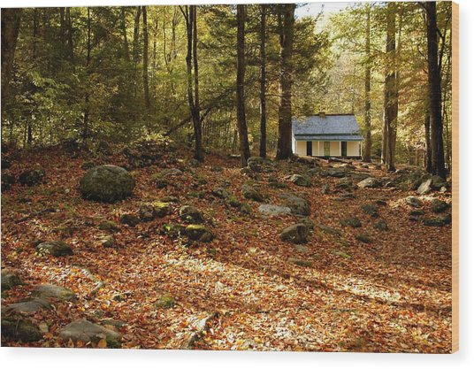 The Alfred Reagan Cabin Autumn Wood Print by John Saunders