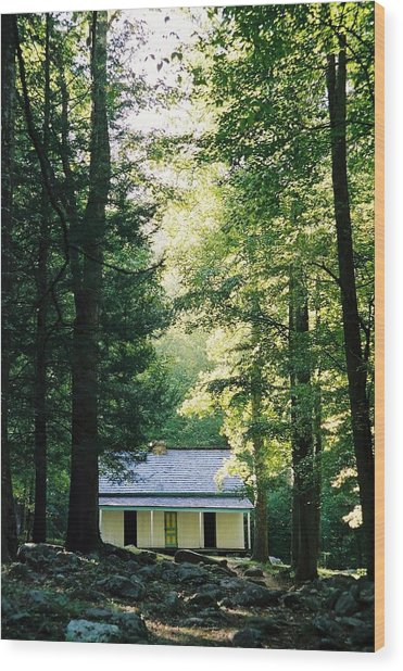 The Alfred Reagan Cabin Gatlinburg Wood Print by John Saunders
