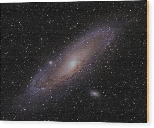 The Andromeda Galaxy Wood Print by Brian Peterson