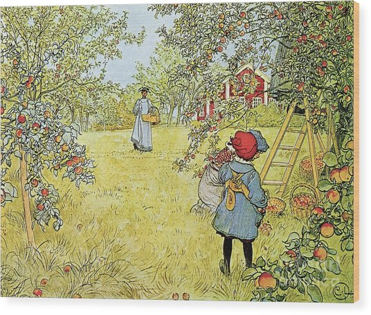 The Apple Harvest Wood Print