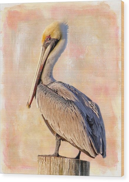 Birds - The Artful Pelican Wood Print