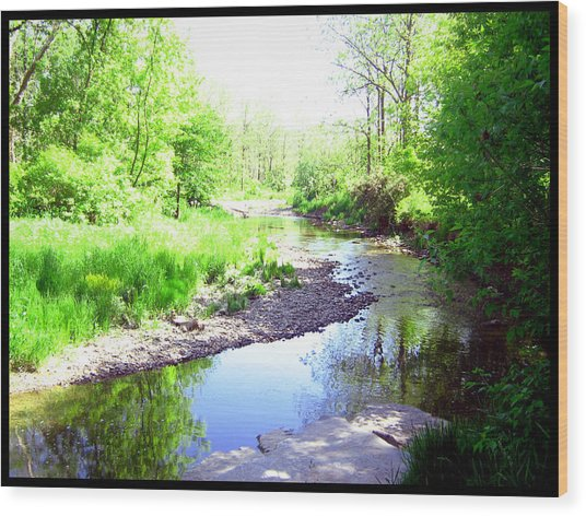 The Babbling Stream Wood Print