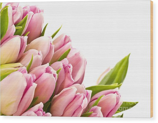 The Beautiful Purple Tulips Wood Print