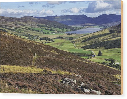 The Beauty Of The Scottish Highlands Wood Print