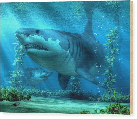 The Biggest Shark Wood Print