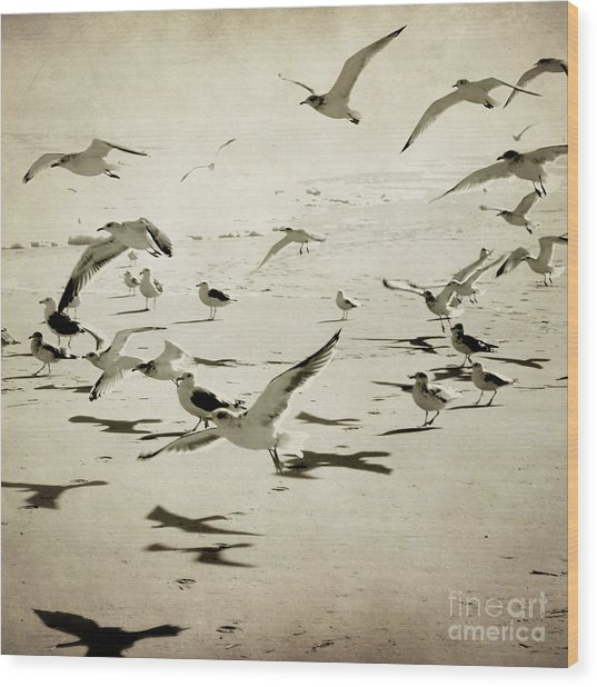 The Birds Wood Print by Sharon Kalstek-Coty