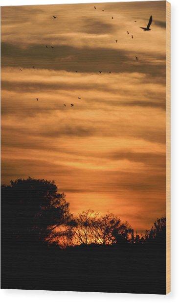 The Birds Still Fly Wood Print by Christy Usilton