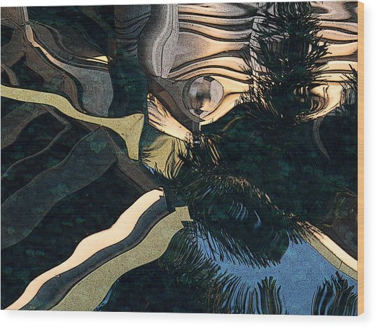 The Birth Of Image Wood Print