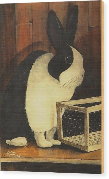 The Black And White Dutch Rabbit  2 Wood Print
