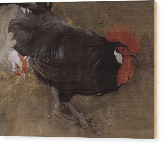 The Black Cock Wood Print