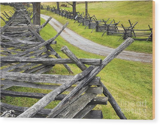 The Bloody Lane At Antietam Wood Print