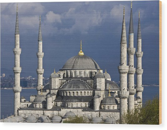 The Blue Mosque In Istanbul Wood Print