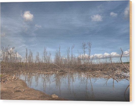 The Blue Water Desert Wood Print by Imago Capture