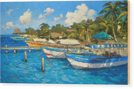 The Boat By The Shore Wood Print