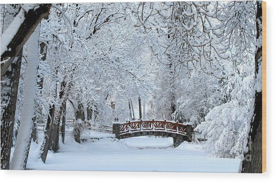 The Bridge In Winter Wood Print