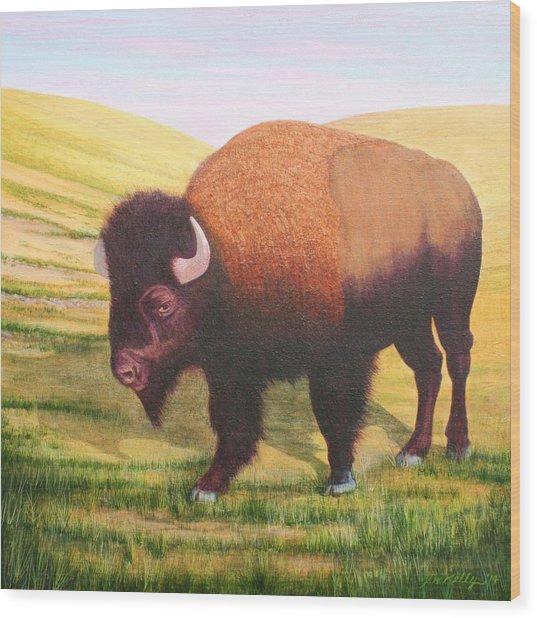 The Buffalo Wood Print by J W Kelly