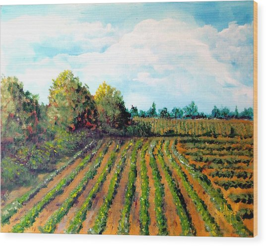 The Butter Bean Patch Wood Print