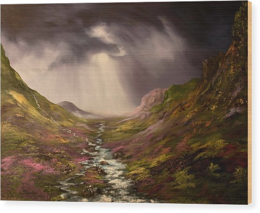 The Cairngorms In Scotland Wood Print