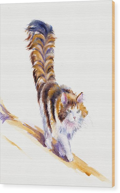 The Calico Cat That Walked By Himself Wood Print