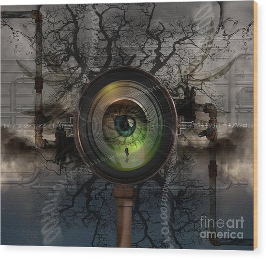 The Camera Eye Wood Print by Keith Kapple